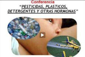 Nicolás Olea: «Pesticidas, plásticos, detergentes y otras hormonas»