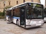 Elecciones sindicales en Salamanca de Transportes SA