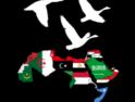 Tarragona: Jornadas «De Palestina a Tahrir»