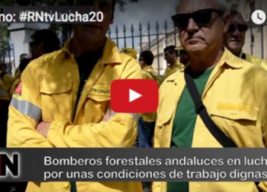 Promo: #RNtvLucha20