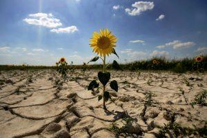 Por unas medidas urgentes, efectivas y justas para la sociedad contra  el cambio climático